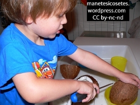 Experimentació amb cocos 05
